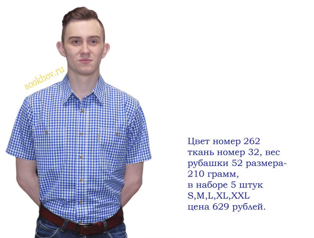 Рубашка короткий рукав на белом фоне мелкая синяя клетка.