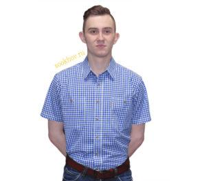 Рубашка мужская белого цвета в сине-голубоватую мелкую